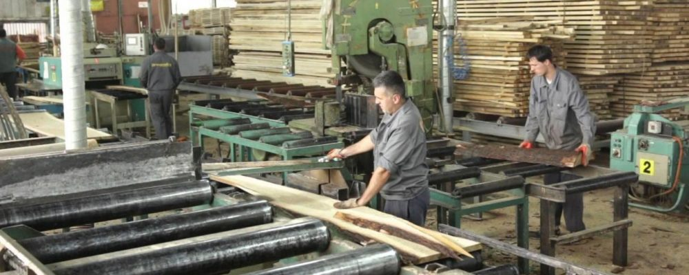 Kvalitetom izgurali Kinu sa tržišta